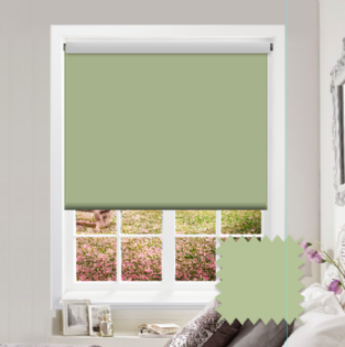 Green Roller Blind - Bahamas Dark Palm